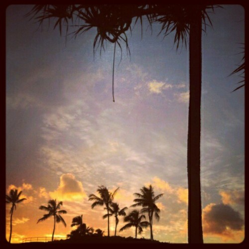 Kaka'ako Sunset #hawaii #kakaako #aloha #hi  (Taken with instagram)