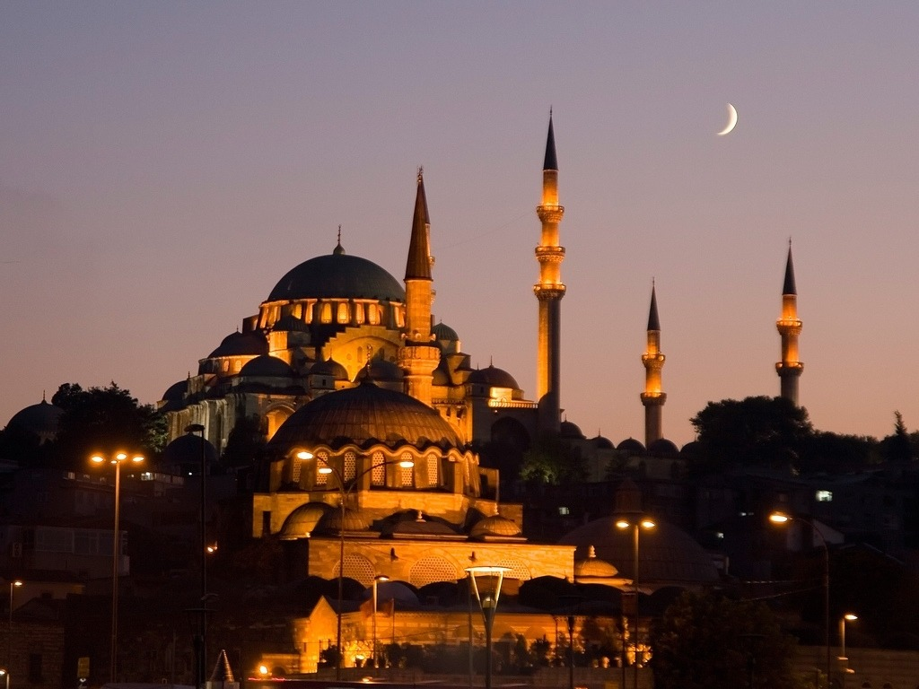 I just booked a plane flight to Istanbul, Turkey.  I'll be in Turkey for 11 days this summer. Anyone want to come with? - RH