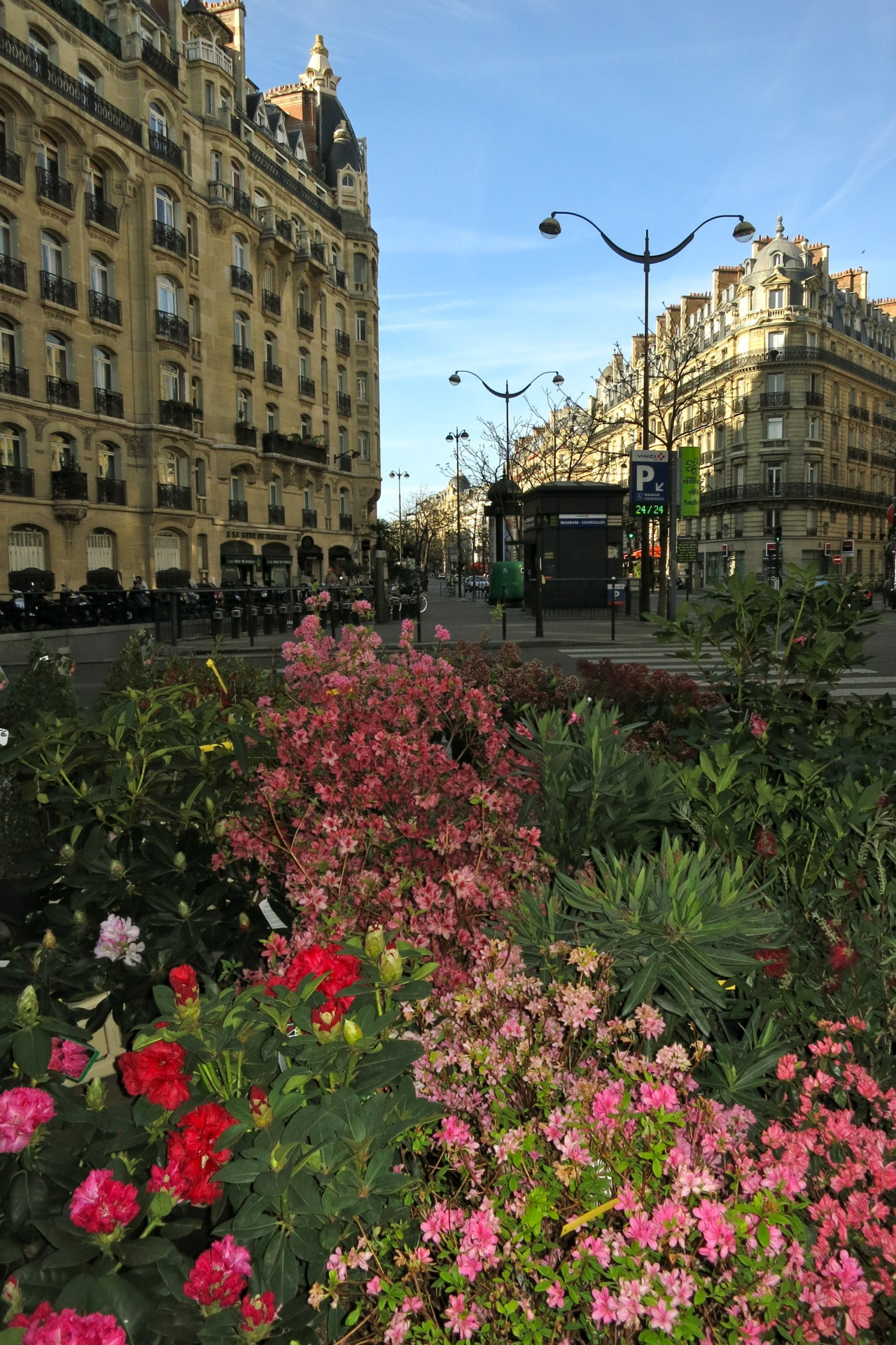 Easter morning at Elyfleurs florist on Avenue Wagram, Paris, France. (Open 24/7, Elyfleurs sells many things one might need as a quick gift in the small hours.)