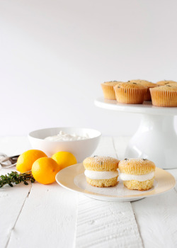 fattiesdelight:  Lemon Thyme Cupcakes with Honey Cream