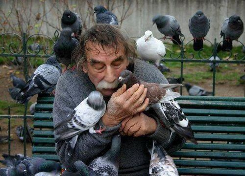 birdblog:  When I grow up, I want to be this man.