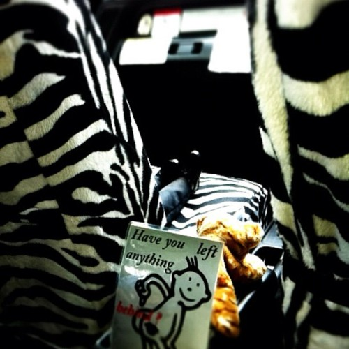 Fancy taxi interior. (Taken with instagram)