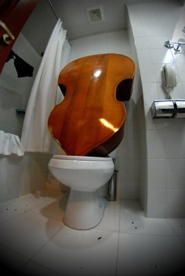 Double bass repair Photo by Anderburg