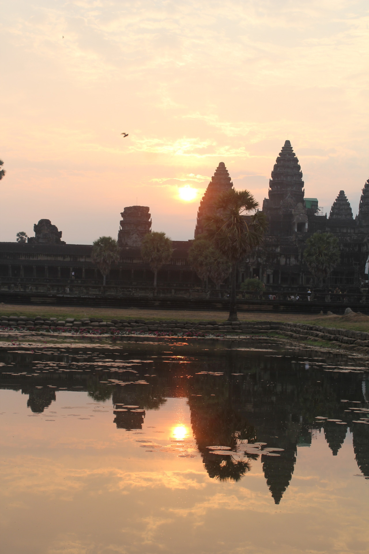 Angkor Wat at sunrise.