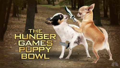 rising:  The Hunger Games Puppy Bowl - SNL