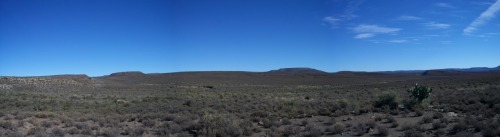 The Karoo. Hot. Dry. And filled with mammal-like reptiles.