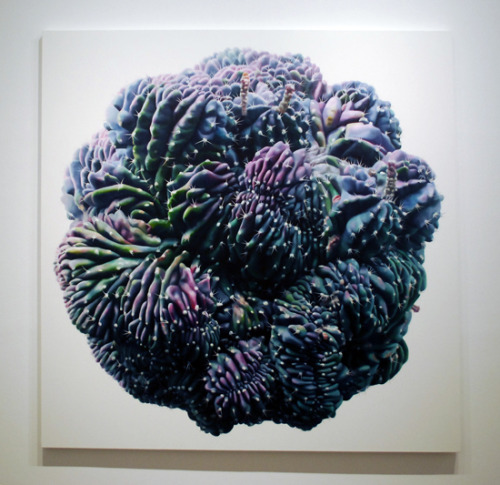 Kwangho Lee cactus no.36, 2009 oil on canvas200x200 cm