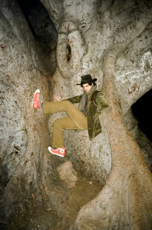 Matthew Gray Gubler in a ficus.