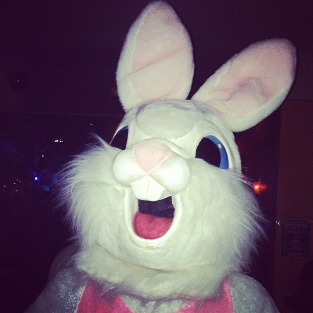 Hey bunny! Thanks for coming to my cd release party, bunny. (Taken with instagram)