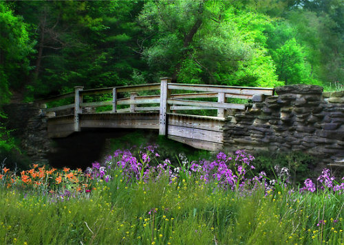 "dragyoudownwithme:  ""Country Bridge"" by Lori Deiter"