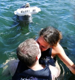 wow so the dolphin asked her to marry him and she kisses the other guy right in front of him rude ass bitch