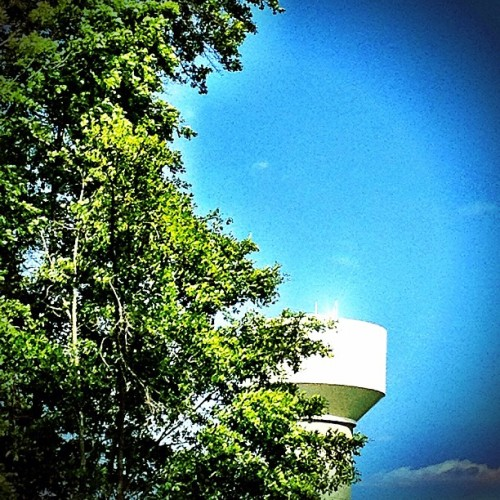 Tower above. #watertower #iphoneography #phototoaster #trees #nature (Taken with instagram)