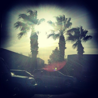 Vegas and Sunlight (Taken with instagram)