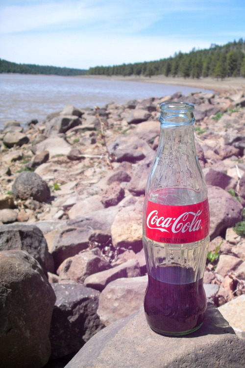Nothing like a good ol' fashioned Coca Cola on a picnic  A great submission from ayomiiiiichelle! Thanks!