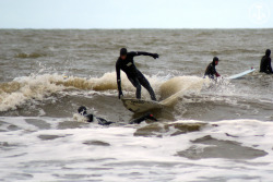Lukas Waning | Study vs. surfing at Holland…