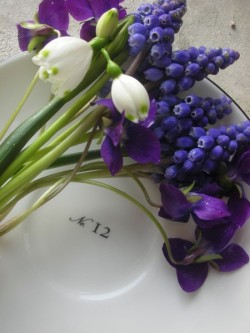 A simple, pretty, place-setting featuring early spring flowers - snowdrops, grape hyacinths, and purple violets.