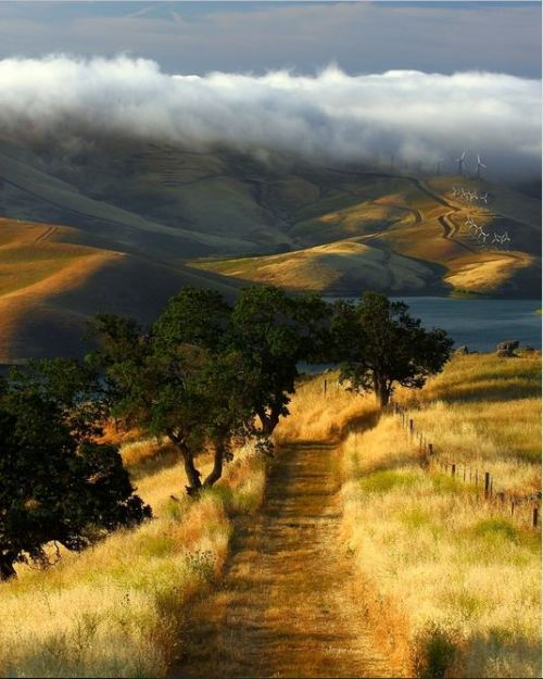 travel-the-earth:  Los Vaqueros Resevoir, Contra Costa Country, California.