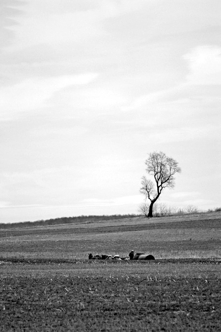 Spring farming Lancaster County Pennsylvania © 2010 D R Nicholson All rights reserved. Reblogging permitted with © credit.