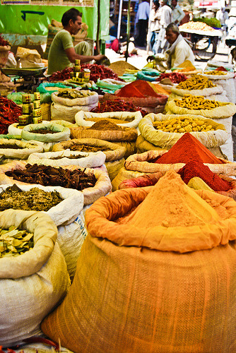 lifein-india:  Indian Spices (by Neha - Gupta)