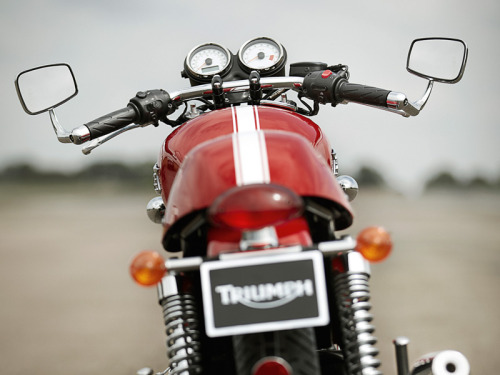 hellyeahthruxton900:  mototerra:  nakedreason: Triumph Thruxton   Nice. Has different bars from mine, and I think the mirrors are slightly different too. Yesterday at the Charlotte St parking lot there were THREE thruxtons. Mine, the older blue one, and ANOTHER BLACK ONE JUST LIKE MINE. DAMN, almost becoming common. Funny cause I never see them anywhere else. Anyhow, guess I can't be the only one with good taste.
