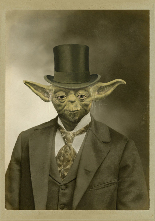 """Sir Yoda"" ~ by Terry Fan"
