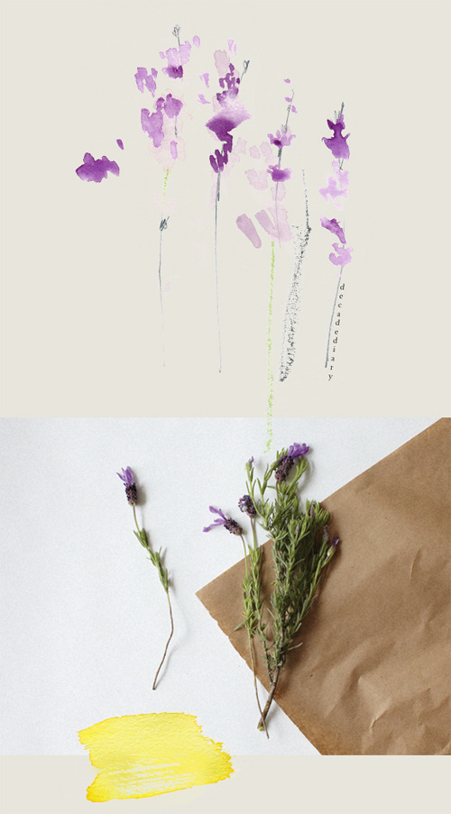 decadediary:  From my sketchbook, Lavender collage Blog Post: Lavender « Illustration and Photo by Decade Diary
