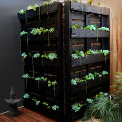 Like Shaynna's DIY vertical garden screen made from old pallets?