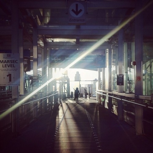 light crossing (photo via Instagram)