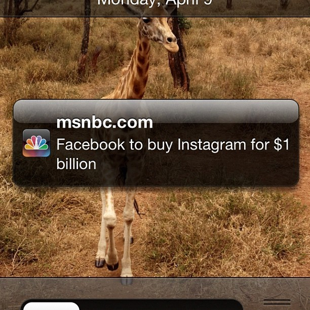 Big mistake. #instagram #facebook #sold #notcool (Taken with instagram)