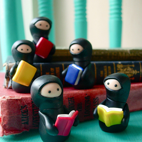 embracebooks:  reading ninjas… (by Lilley1)