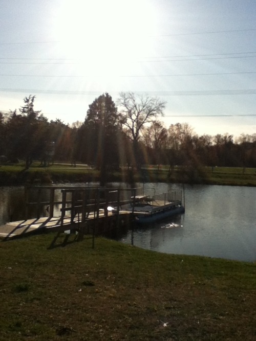 the sun beaming over a pond on my uncles property