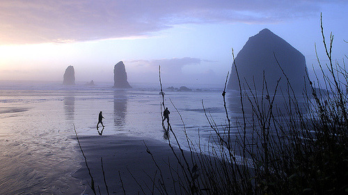 Oregon coast 3 (by rabesphoto)
