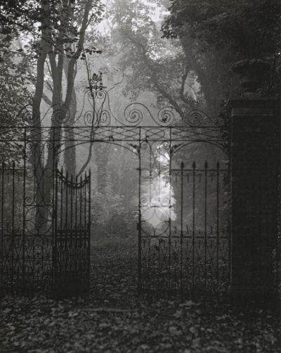 liquidnight:  Edwin Smith Gates, Hardwich House Park Bury St Edmunds, Suffolk, 1955 From Evocations of Place: The Photography of Edwin Smith