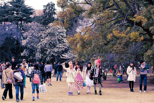 Hanami with Harajuku Kids by tokyofashion on Flickr.