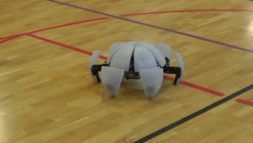 The best morphing hexapod robot video you'll see today — guaranteed.