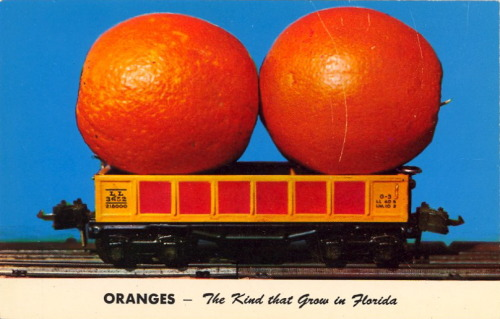 bad-postcards:  ORANGES—THE KIND THAT GROW IN FLORIDA  TOY TRAINS—THE KIND THAT GROW IN FLORIDA