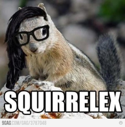 thermalmittens:  Squirrelex