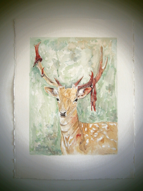 """Deer velvet"" Watercolor, Ink and Gouache on paper. 57 X 75 cms 2012  From the series: ""What comes after spring"""