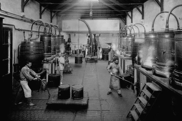Workers at Marie Brizard Distillery 1905