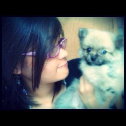 Betty Carolina Queen #love #mypuppies #miss  #hug #cute #love #instamood #iphonesia #instagood #instapad 🐶❤😢 (Taken with instagram)