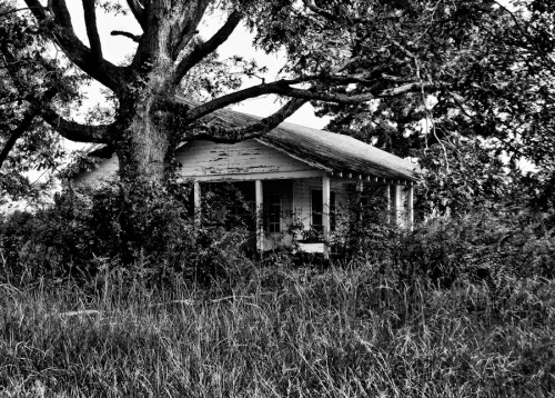"""Abandoned House, Mississippi,"" by Kristi Hines"