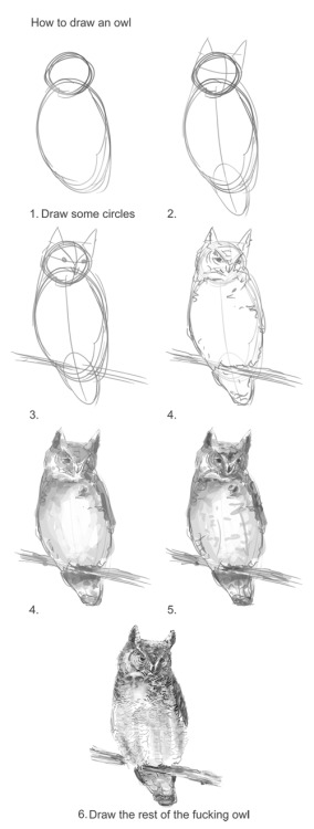 How to draw an owl… completely, at last.