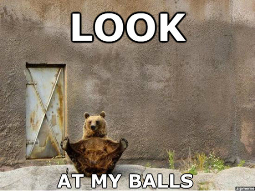 The Look At My Balls Bear. Obviously.