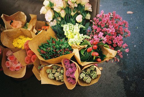 levittious:  Flowers. (by theseyoungarchies)