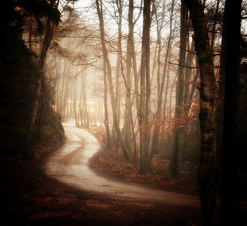 indicio:  The Road Never Taken (by Mariann Nikolaisen)