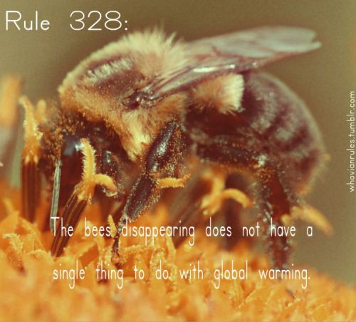 Rule 328: The bees disappearing does not have a single thing to do with global warming. Submission! [Image Credit]