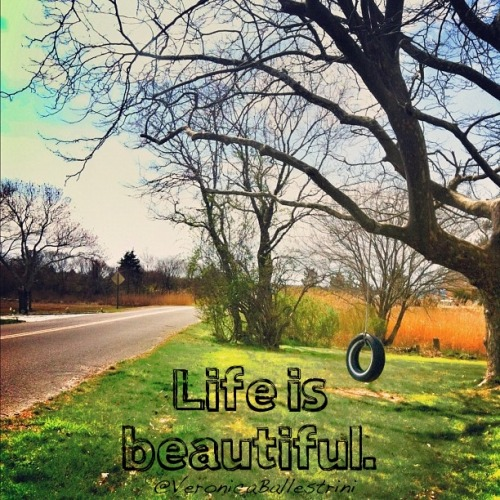 Life is beautiful.  I took this down the street from my parents house. Waterford, CT.