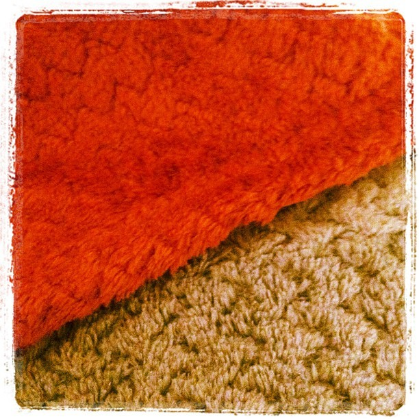These plush throws arrived today, and they are just as soft as they look. #love (Taken with instagram)