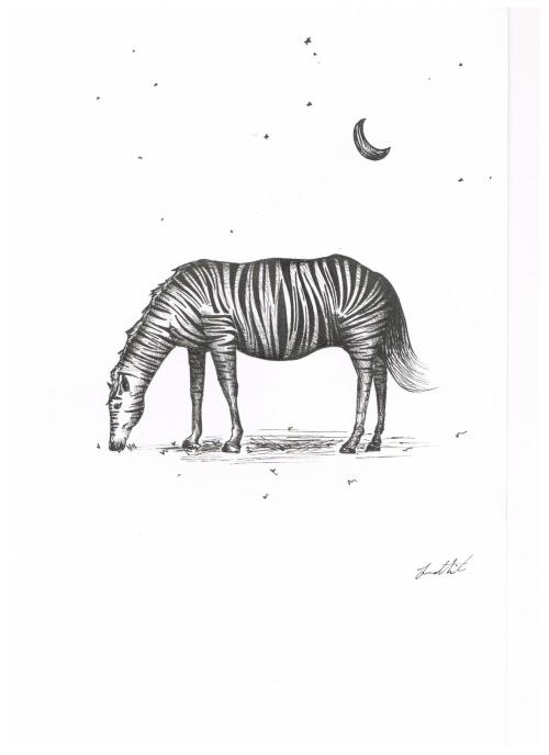 Horse. Zebra Stripes.  just a ordinary fucking zebra -.-