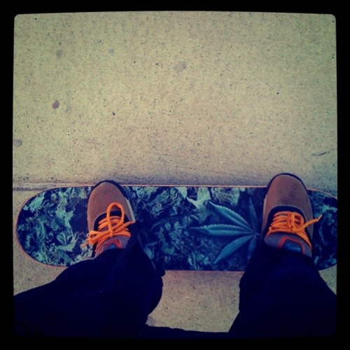 My Board and My Shoes
